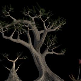 Q_Trees